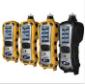 多合一气体报警器 PGM-6208